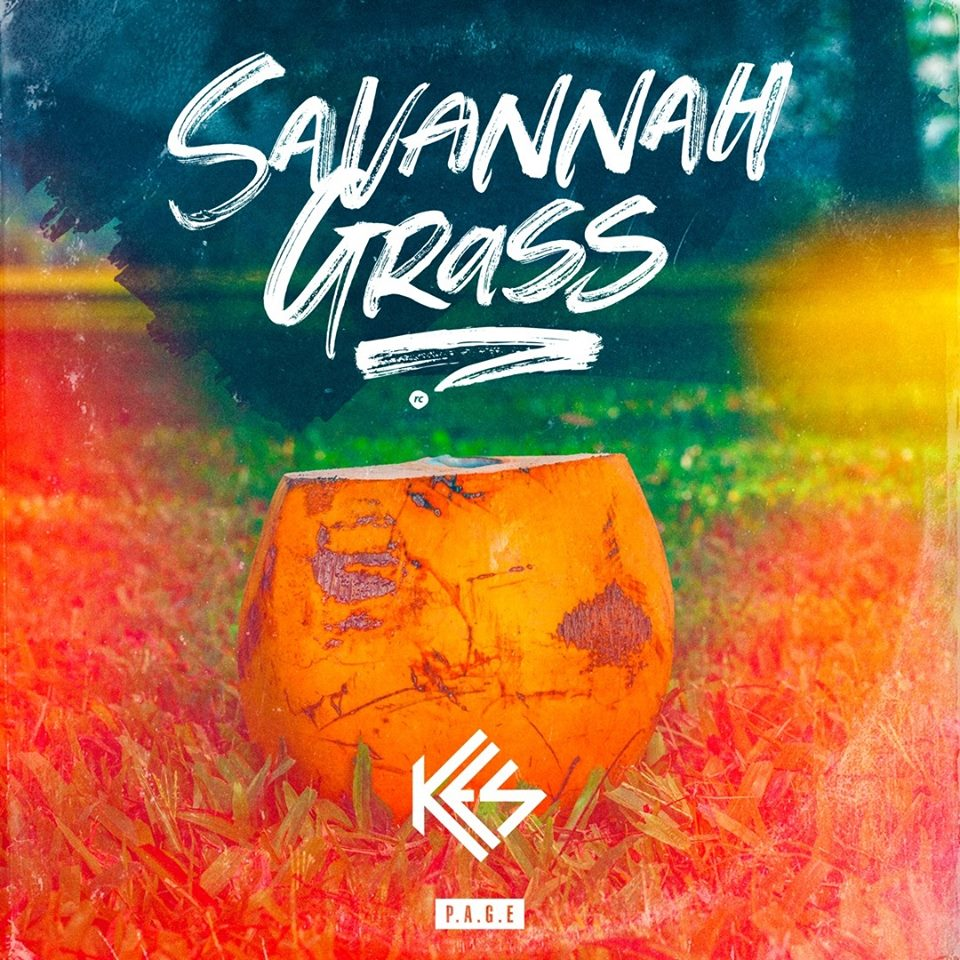 Kes - Savannah Grass Lyrics | Soca Words